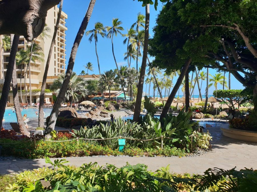 Hilton Hawaiian Village Beach Resort in Waikiki. Photo Courtesy of Nico Smit on Unsplash.